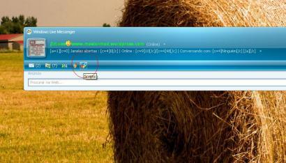 [MSN PLUS]Total de usuarios online em seu subnick no MSN Des1